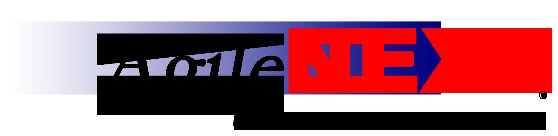 AgileNext-website